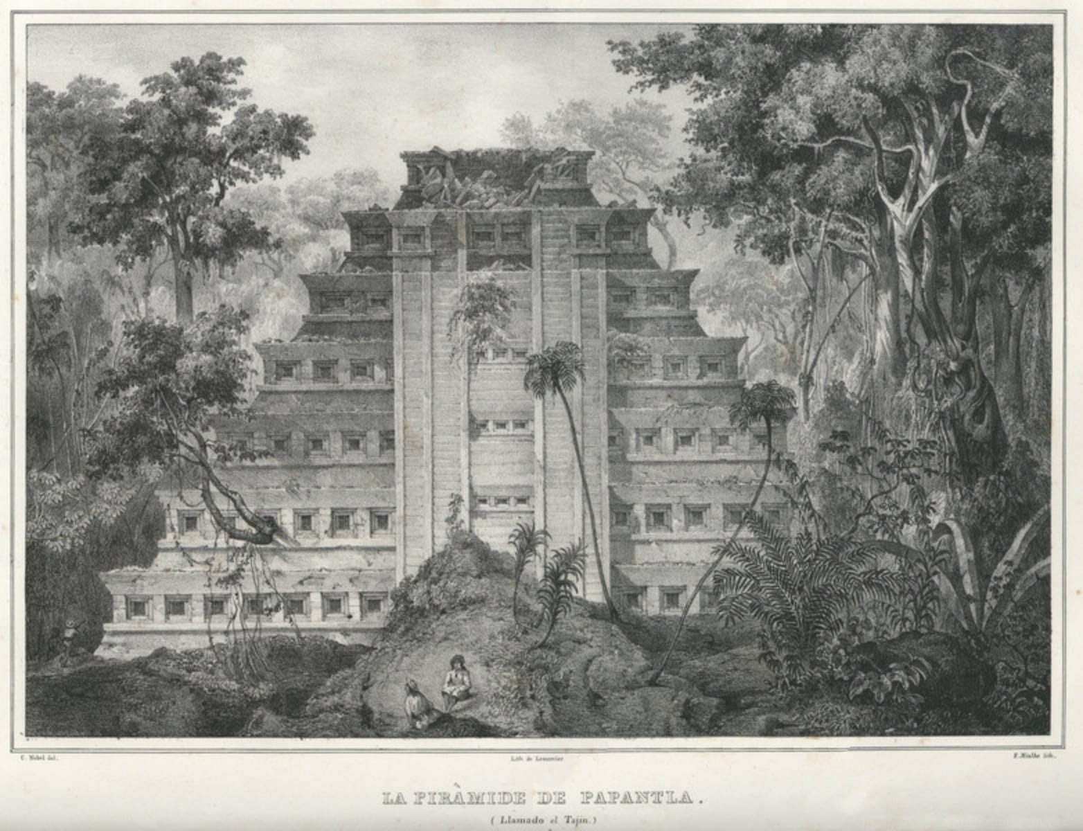 Pyramid of Niches.